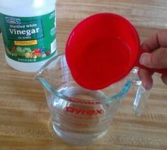 How to clean and disinfect the microwave with just vinegar and water. :: Hometalk