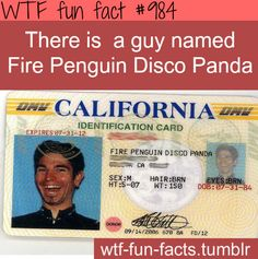 coolest name ever  MORE OF WTF-FUN-FACTS are coming HERE  funny laws and weird facts ONLY