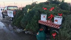 A man is giving away Christmas trees, stands and lights to families in need on Friday, Dec. 23, 2016. (Tim Warner/Facebook) #ArwoodWaste