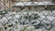 Bianca come la neve