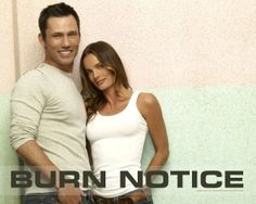 Burn Notice best show ever and lots of nice eye candy bonus
