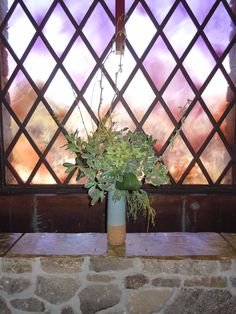 all foliage design for Lent