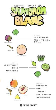 Regional Styles of Sauvignon Blanc - http://winefolly.com/tutorial/where-to-find-the-best-sauvignon-blanc/ #SauvignonBlanc #Wine #Flavors