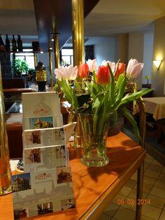 Hotel_Dresden_Weihnachten_Hotel_Silvester_Elberadweg_Dresden_Hotels_Dresden_14