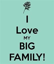 I love my big family! Six kids on each side, in-laws, nieces, nephews, cousins galore. I Miss My Family, Happy Family, Friends Family, Big Family Quotes, Families Are Forever, Beautiful Family, Just Love, Life Lessons, Sayings