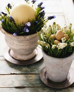originelle osterdekoration frische Blumen in Topf und Wachteleier
