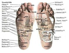 Vita-Flex Foot Chart with recommendations for placement of Young Living Essential Oils and Blends Yl Oils, Doterra Oils, Doterra Essential Oils, Essential Oil Blends, Doterra Blog, Young Living Oils, Young Living Essential Oils, Foot Chart, Living Essentials