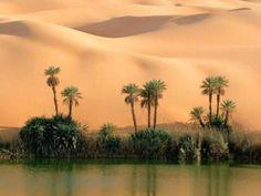 El Desierto en Egipto