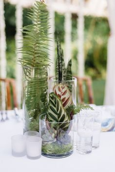 Tropical wedding centerpieces via Jana Williams / http://www.himisspuff.com/green-tropical-leaves-wedding-ideas/9/