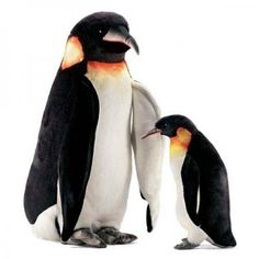The Handcrafted 29 Inch Lifelike Emperor Penguin Stuffed Animal by Hansa is an amazingly realistic and brilliantly designed stuffed animal that will last a lifetime. Our lifelike stuffed emperor penguin has a one of a kind appearance and a high level Plush Animals, Stuffed Animals, Penguin Bird, Life Size Statues, Emperor Penguin, Muppet Babies, Outdoor Christmas Decorations, Garden Statues, Bald Eagle