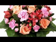 Toate florile din lume ! - Anisoara Puica - - YouTube Floral Wreath, Animation, Make It Yourself, Youtube, Floral Crown, Animation Movies, Youtubers, Youtube Movies, Flower Crowns