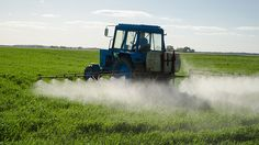Are We Being Poisoned by Glyphosate?