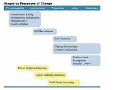 Processes of Behaviour Change
