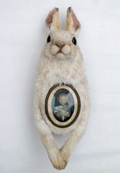 Days That Fade. White mountain hare with miniature sculpture inset into chest.