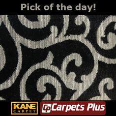 Carpets Plus - Kane Carpet -Pattern -  Pick of the day!