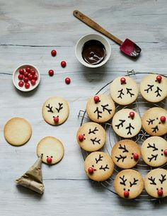 Christmas Reindeer Cookies - The first box of our gourmet Advent calendar unveils these Christmas reindeer biscuits: tasty vanil - Xmas Food, Christmas Cooking, Christmas Desserts, Holiday Treats, Christmas Treats, Holiday Recipes, Christmas Recipes, Christmas Holiday, Christmas Decorations