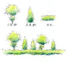 手描きパースの描き方、樹木を描く l 手描きパースの描き方ブログ、パース講座(手書きパース) Plant Sketches, Tree Sketches, Drawing Sketches, Art Drawings, Landscape Drawings, Landscape Art, Landscape Design, Rendering Art, Tree Study