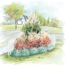 Ornamental Grass Garden - 1 white pampas grass, 3 flame grass, 5 blue oat grass for a 6x6 corner.