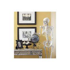 skeleton door greeter