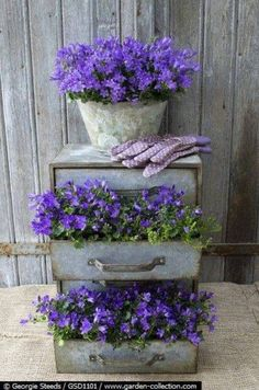 Another clever planter