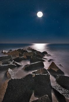 Vilano Beach Moon Rocks   Flickr - Photo Sharing!