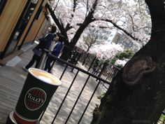 Cafe W.E and Tullys Coffee Sumida Park Store in Asakusa, Tokyo, Japan | 25Cafes.com ~ Travel Guide to 100% Smoke Free Cafes in Tokyo and Yokohama, Japan