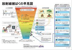 先月、放射線医学総合研究所「放射線被ばくの早見図」がこっそり変更されています。添付イメージは2011年4月。2013年5月は…http://www.nirs.go.jp/data/pdf/hayamizu/j/20130502.pdf→100mSv以下で「がんの過剰発生がみられない」が削除。