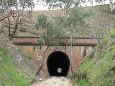 Victoria Park Railway Tunnel in Brisbane, Australia played host to one of Brisbane's most famous ghosts in 1965, after a group of local children overheard rumours suggesting a ghost had been observed within the tunnel. The following night, the intrepid ghost hunters crept down in the hope of spotting the spook. One boy, was apparently accosted by a misty green, armless, legless, headless apparition that seemed to materialise from the wall of the tunnel.