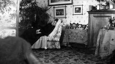 Imperial Russia, sunovertheempire:   The Empress Alexandra lounging...