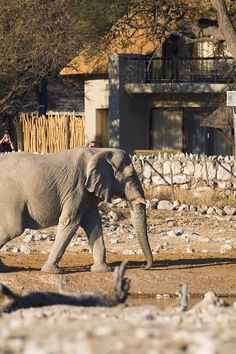 Okaukuejo CampFamous for its floodlit waterhole Okaukuejo Rest Camp is also the administrative centre of Etosha. Most visitors travel though this camp with its characteristic stone tower and Etosha Ecological Institute is also situated within the camp.The rest camp was