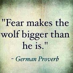 El miedo hace que el lobo parezca más grande.   #ccs #Caracas #Venezuela…