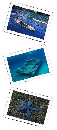 PNG dive
