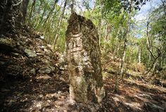 Archaeologists have discovered a lost Mayan city in the jungles of southeastern Mexico.