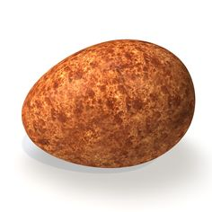 Realistic Peregrine Falcon Egg Dxf - 3D Model
