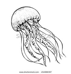 jelly fish line art vector illustration Fish Drawings, Outline Drawings, Animal Drawings, Squid Drawing, Ocean Drawing, Fish Sketch, Jellyfish Tattoo, Sea Life Art, Coral Art