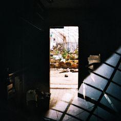 Tropicanarotterdam / abandoned places