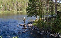 National Park Hossa in Kainuu, Finland. - Hossa voi harrastaa kalastusta.