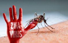 Diễn biến dịch bệnh do virus Zika tại khu vực Đông Nam Á