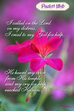 Psalm 18:6