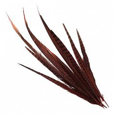 """Pheasant Tails Assorted Dyed - Red  Product SKU: B574_10--R Product SKU: B574_10--R Size: 16-30"""" (10 piece pkg) Shop Feathers: www.featherplace.com Pheasant Feathers, Size 16, Wreaths, Shop, Red, Door Wreaths, Deco Mesh Wreaths, Floral Arrangements, Garlands"""
