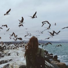 Kate and the birds | Flickr - Photo Sharing!