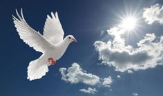 """Approach each person and each situation as individual. Listen to the Holy Spirit and make yourself available to minster to those around you as He would have you minister to them. Go to http://faithsmessenger.com/the-holy-spirit/ to read the article """"The Holy Spirit Inspired Delivery of God's Love"""""""