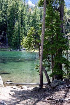 prettiest lake ever. Beautiful World, Beautiful Places, Oregon Lakes, Mountains, Plants, Travel, Cute, Viajes, Destinations