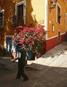Guanajuato, Mexico.  Picture by: Norah Abdul Instagram: treasure_collector #norahabdul #treasurecollector #mexico #guanajuato #sanmigueldeallende
