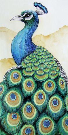 Watercolor Peacock, Peacock Painting, Watercolor Art, Peacock Sketch, Peacock Drawing Simple, Art Drawings Sketches Simple, Bird Drawings, Colorful Drawings, Peacock Wall Art