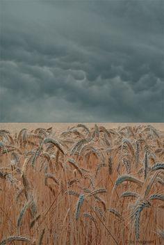 a quieter storm