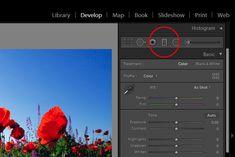 Color Range Masking the Graduated & Radial Filters in Adobe Lightroom