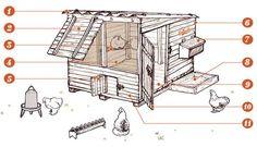 Construire un poulailler. Tout savoir pour réussir à construire facilement un poulailler familial solide et sain pour les poules, adapté au climat de ...