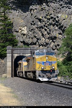 Net Photo: UP 2534 Union Pacific GE at Cooks, Washington by Indecline Location Map, Photo Location, Heritage Train, Union Pacific Railroad, Railroad Photography, Train Pictures, Favorite Pastime, Train Tracks, Washington State