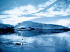 Swan Lake, Wyoming